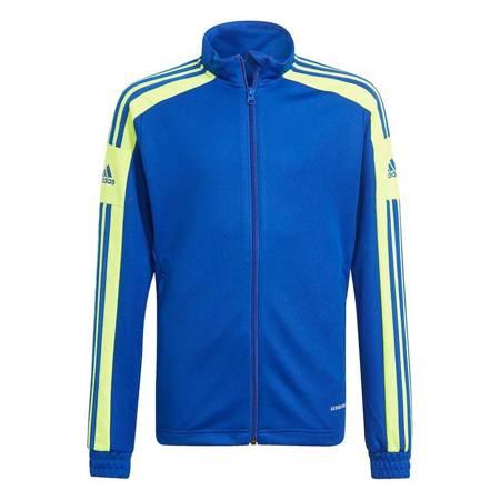 Bluza dla dzieci adidas Squadra 21 Training Youth niebiesko-zielona GP6454